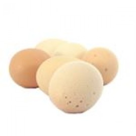 Chicken Eggs (Layer) // 12 pcs