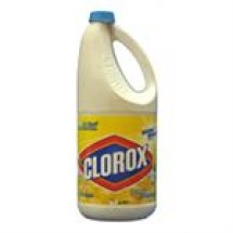 Clorox Regular Bleach // 2 ltr