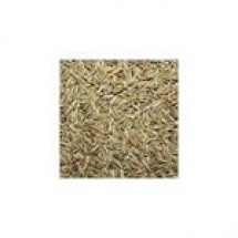 Cumin Seed (Jira) // 200 gm