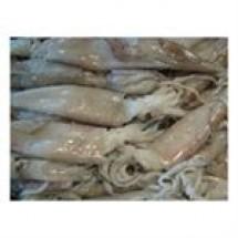 German Butcher Squid Ring