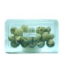 Koel Eggs // 20 pcs