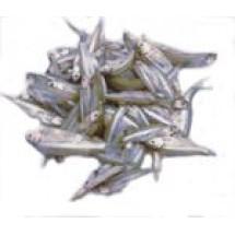 Mola Fish // 500 gm
