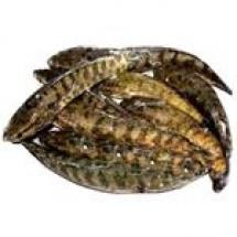 Taki Fish // 1 kg