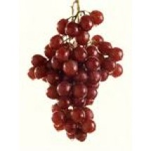 Red Grapes // 1 kg